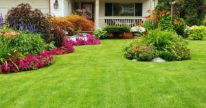 Landscaper Australia What Entails A Good Landscape